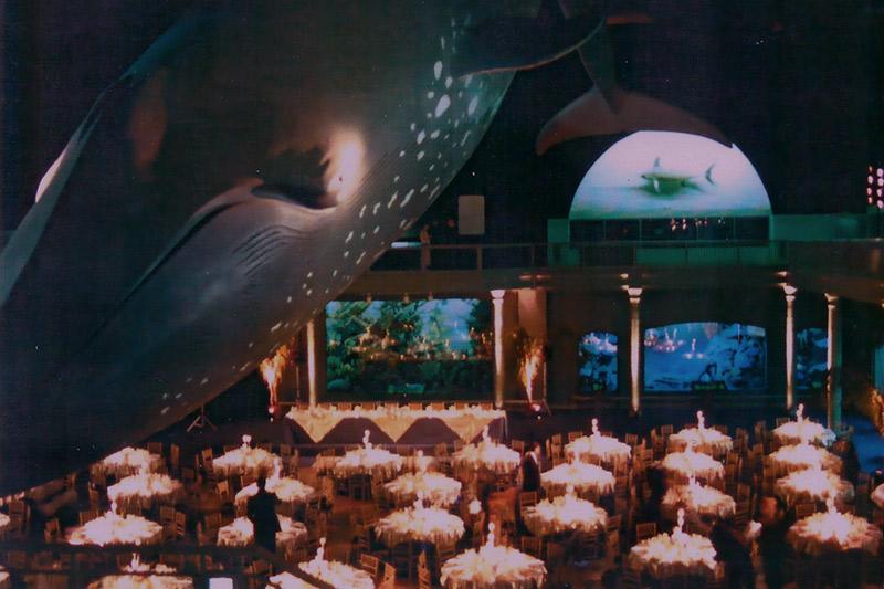 turner tomorrow fellowship ocean-life-award-dinner